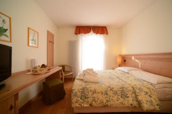 hotel_paganella_115736F3788-AB07-9006-3CB0-30050AAFA9EC.jpg