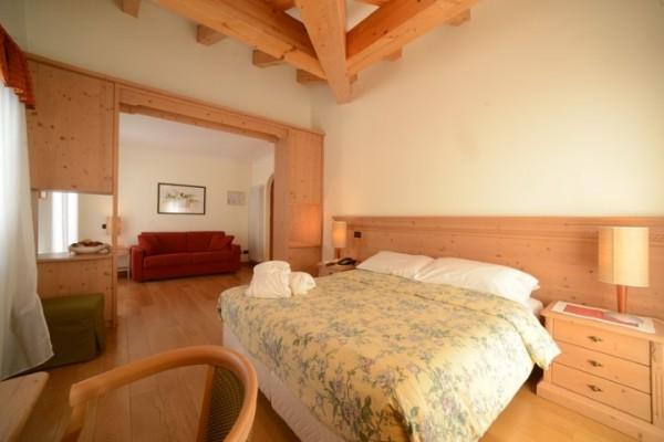 hotel_paganella_107DFD727D5-06C4-C7B0-62E1-E38ECF2D818F.jpg