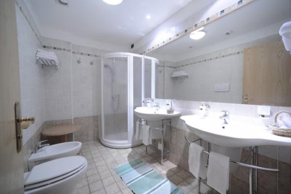 hotel_paganella_114C9F8BCC1-5F68-EC15-E425-F4ABB7EE139C.jpg
